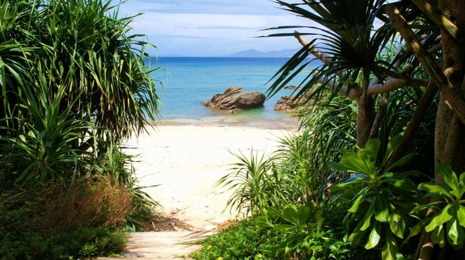 ハワイアンパンケーキハウス パニラニ - メイン写真: