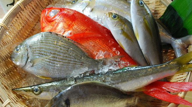 わらべ菜魚洞 - メイン写真: