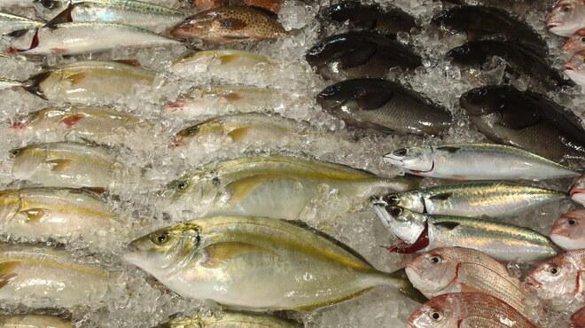 江口蓬莱館 - 内観写真:鮮魚コーナー
