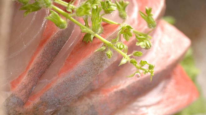 鹿児島黒豚しゃぶしゃぶ あじと - 料理写真:錦江湾産! 絶品カンパチ刺し盛り