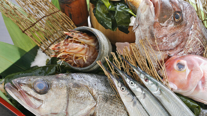 眺河 先斗町~華~ - 料理写真:京都北部の丹後港より直送の鮮魚を扱っております