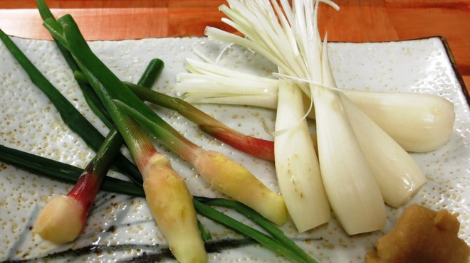 駒八 - 料理写真:エシャレットと谷中生姜