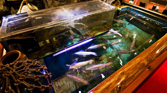 日本大漁物語 きじま - メイン写真: