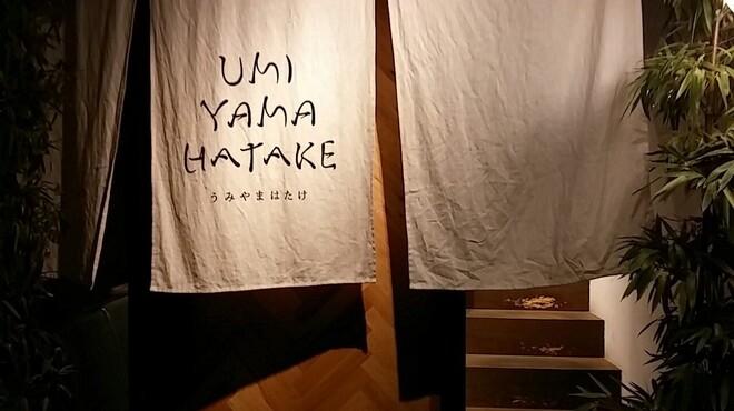 うみやまはたけ - メイン写真: