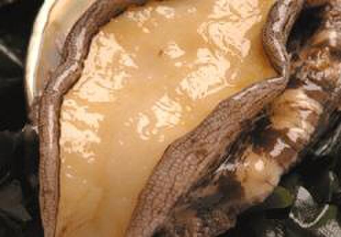 バンブー グラッシィ - 料理写真:活あわび