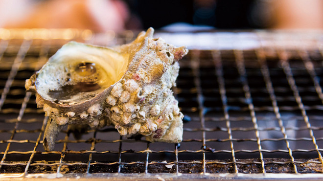 鯛丸海月 - メイン写真: