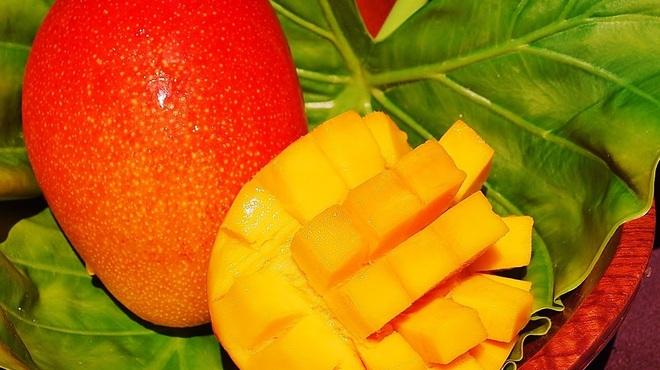 楽園の果実 - メイン写真:
