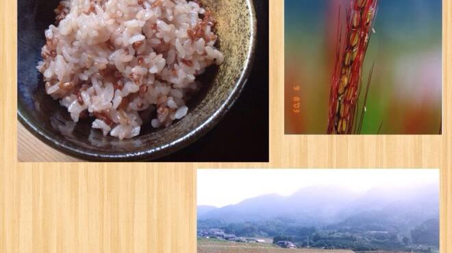 田園茶屋 いとわ - 料理写真:二丈赤米ごはん