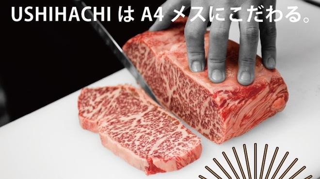 USHIHACHI 牛8 - メイン写真: