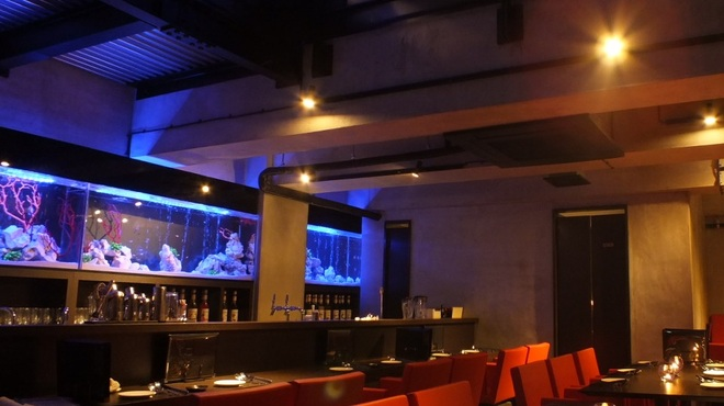 Aquarium Lounge&Bar Cluz(クルーズ)