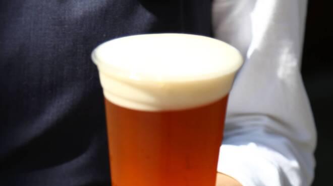 湯島庵 - ドリンク写真:下呂麦酒 クラフトビール 生ビール