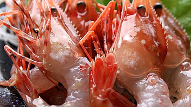 さかな市場 漁漁 - メイン写真: