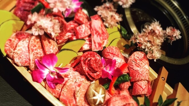 夜桜 - メイン写真: