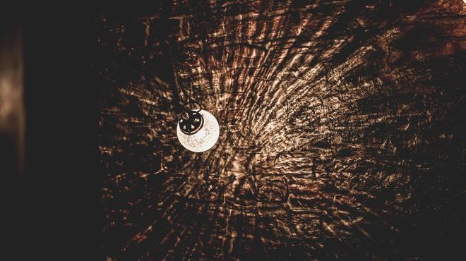 夜木 - メイン写真: