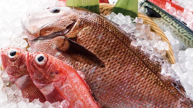 個室 肉バルVS魚バル - メイン写真: