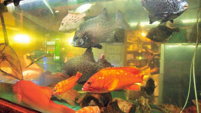 魚河岸 番屋 - 料理写真: