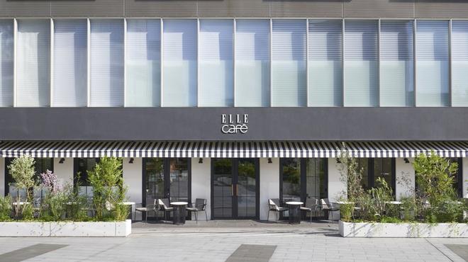 ELLE cafe Aoyama - メイン写真: