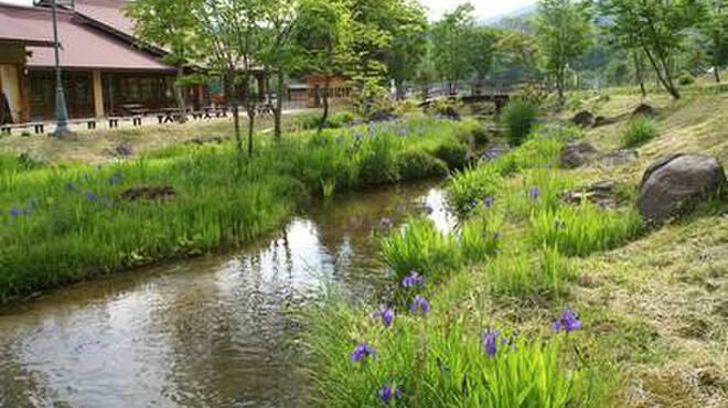 天空の牧場 奥飛騨山之村牧場 - メイン写真: