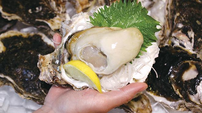 舞鶴港 漁師小屋 - メイン写真: