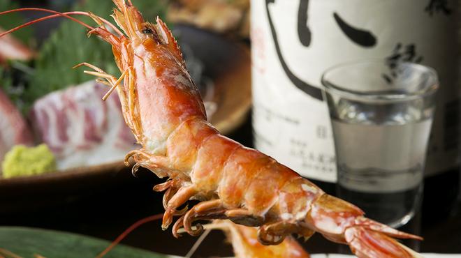 鮮魚と日本酒 郷味 - メイン写真: