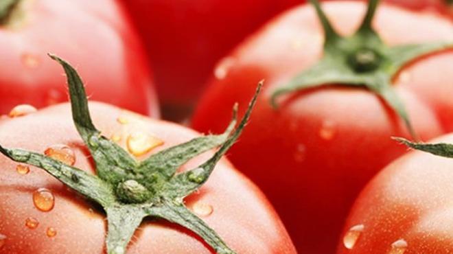 京ちゃばな - 料理写真:新鮮なトマトを使用