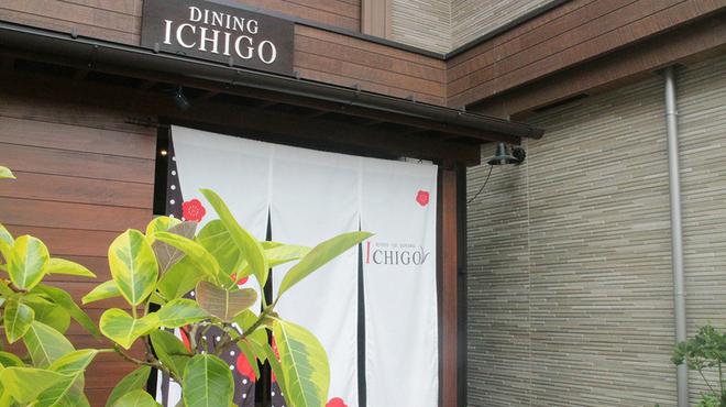 ICHIGO - メイン写真: