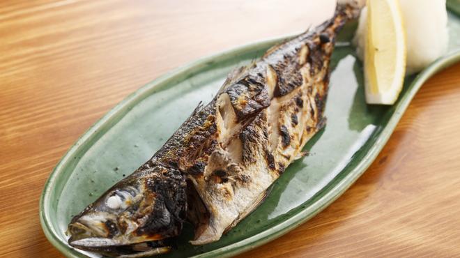 魚猫 - メイン写真: