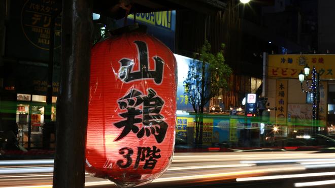 山鶏 - メイン写真: