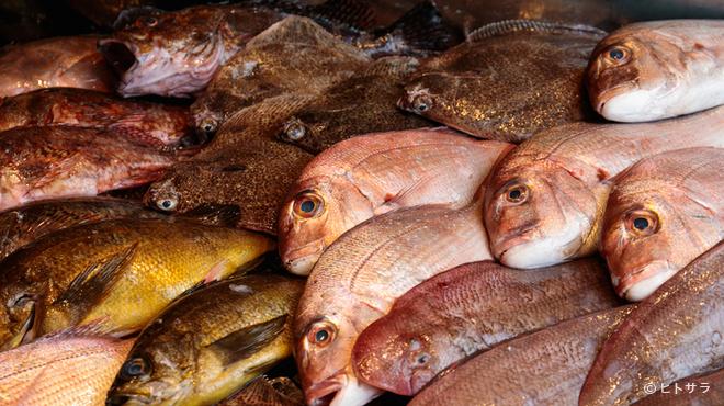 銀座 遠音近音 - 料理写真:瀬戸内で採れた新鮮な魚や、滋味あふれる果物、野菜をご提供