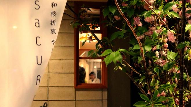 SaCURA - メイン写真: