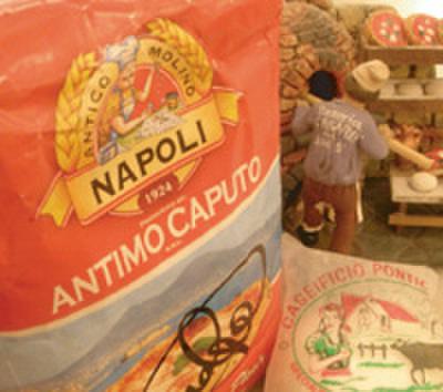 ソロピッツァ ナポレターナ - メイン写真: