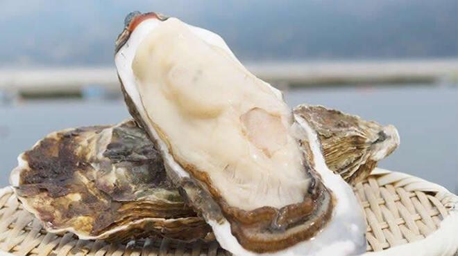 産地直送 鮮魚と農家野菜 ポズダイニング - メイン写真: