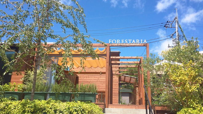 FORESTARIA - メイン写真: