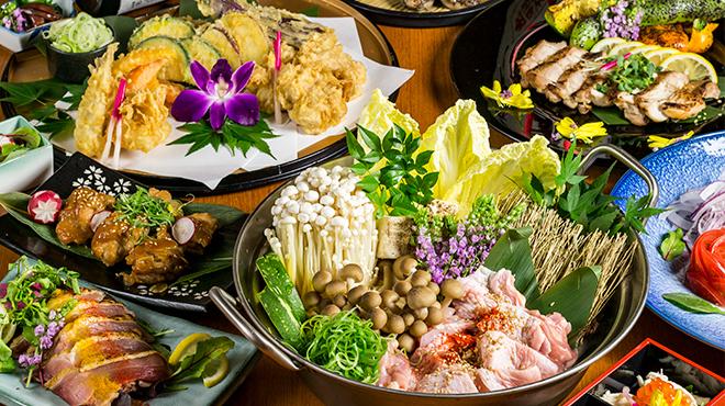 地鶏酒房 越乃蔵 - メイン写真: