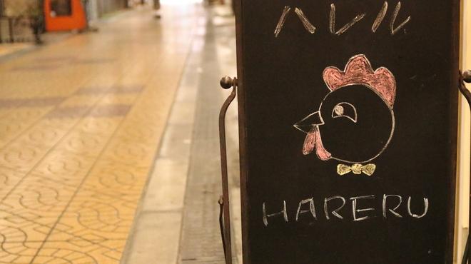 韓国居酒屋 晴-ハレル- - メイン写真: