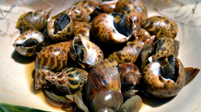 鮮魚とおばんざい 我屋 - 料理写真:
