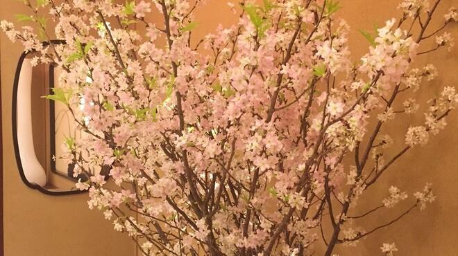 花蝶 - メイン写真: