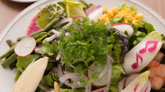 ビルボードカフェ&ダイニング - 料理写真:12種類の具材を使ったサラダ