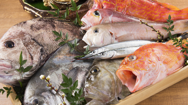 魚ノ巣 - メイン写真: