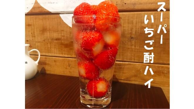 手包み餃子 CHANJA - メイン写真: