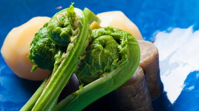 喜の字 - 料理写真:煮野菜(新じゃが、新ごぼう、こごみ)