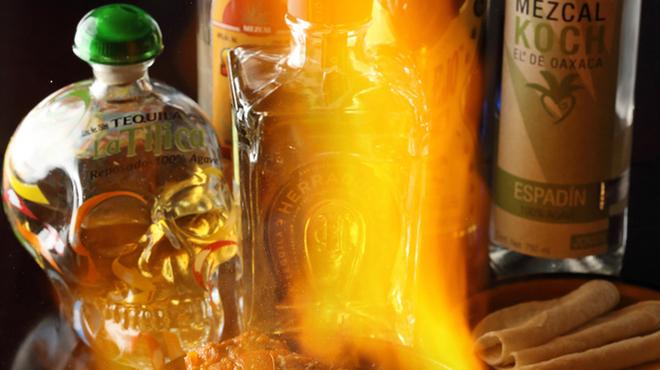 メキシカンバルタコリブレ - メイン写真: