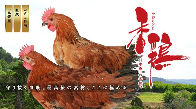 香鶏酒房鳥八 - メイン写真: