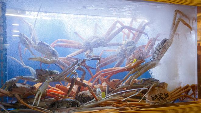 山陰漁港直送 うおはる - メイン写真: