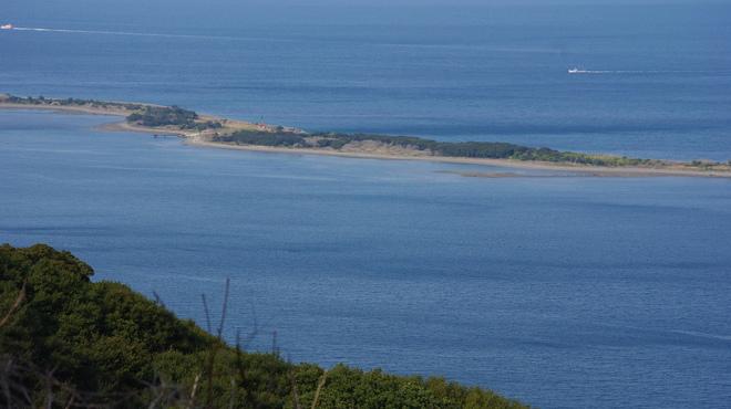 新島水産 - メイン写真: