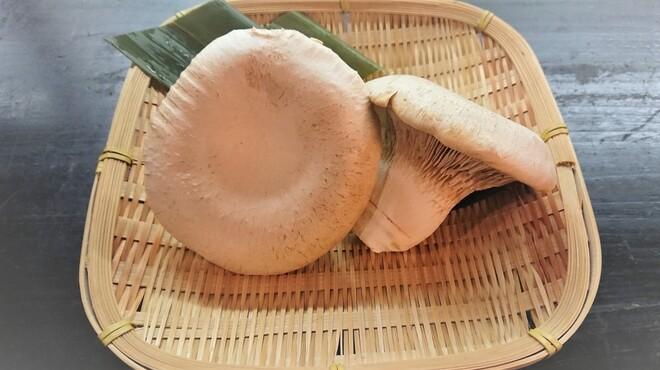 秋田きりたんぽ屋 - 料理写真:白神あわび茸