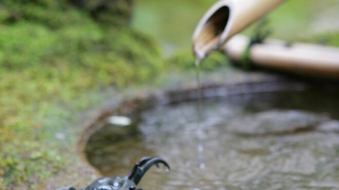 魚三楼 - 内観写真:手入れの届いたお庭は京の季節の移り変わりを感じます