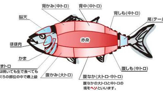 魚之屋 - メイン写真: