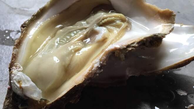 越前蟹の坊 - 料理写真:天然 岩牡蠣