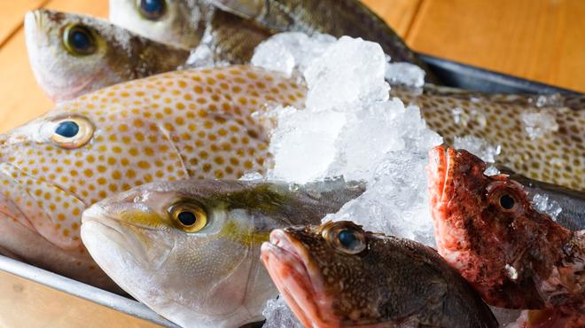 ビストロ魚バカ一代 - メイン写真: